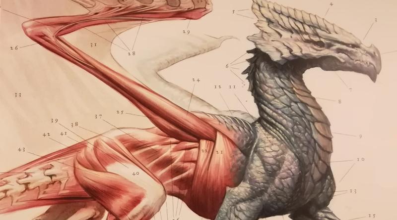 Naturgeschichte der Drachen