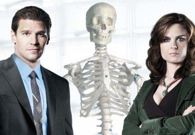 Bones – Die Knochenjägerin (Staffel 1)