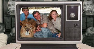 TV-Kindheitserinnerungen – Teil 8: Daktari